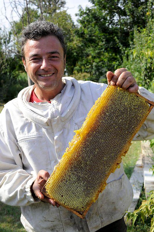 apiculteur 89